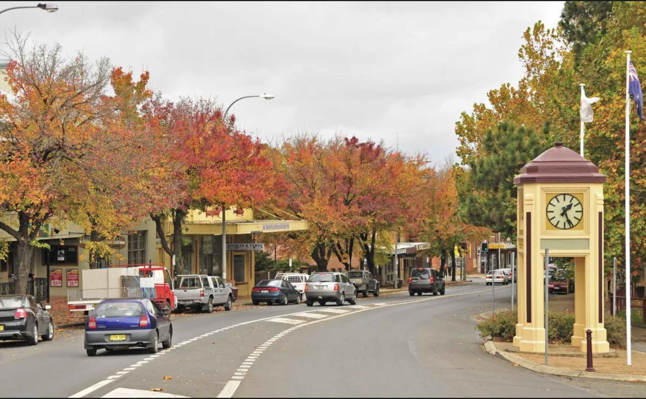 WSM Moss Vale